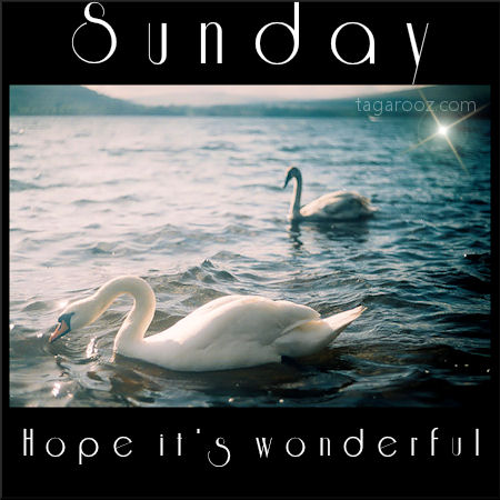 Sunday hope it's wonderful | Sunday Comments and Graphics