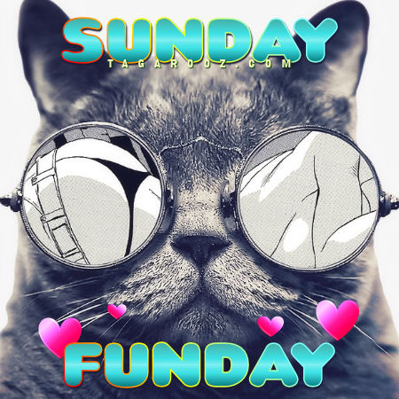 Sunday Funday | Sunday Comments and Graphics
