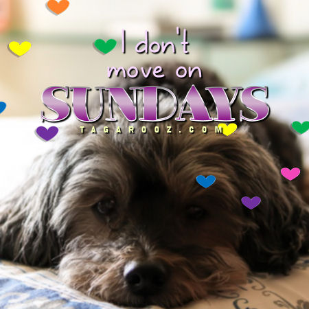 I don't move on Sundays | Sunday Comments and Graphics