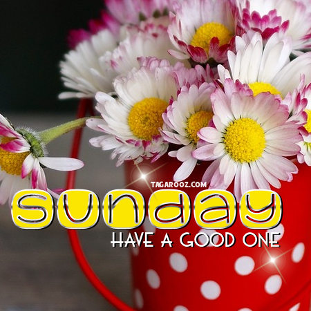 Sunday have a good one | Sunday comments, Happy Sunday graphics