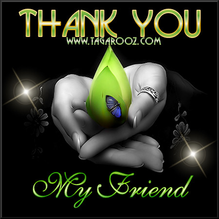 Thank you my friend | Tagarooz.com