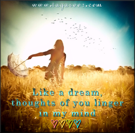 Like a dream thoughts of you linger in my mind | Tagarooz.com
