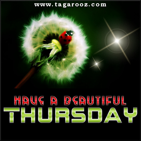 Have a beautiful Thursday | Tagarooz.com