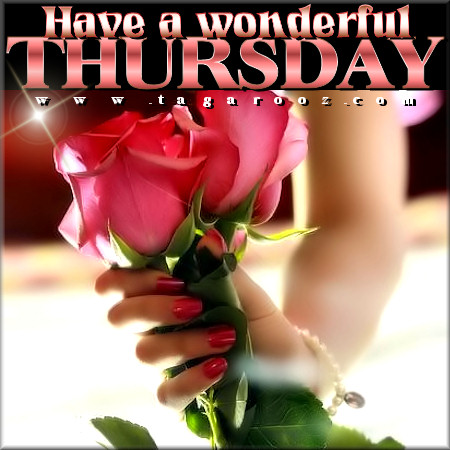 Have a wonderful Thursday | Tagarooz.com