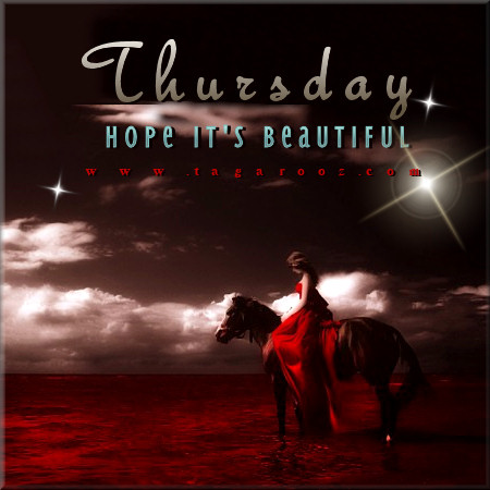 Thursday Hope it's Beautiful | Tagarooz.com