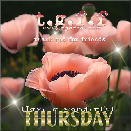 TGFF Thank God for Friends - Have a wonderful Thursday | Tagarooz.com