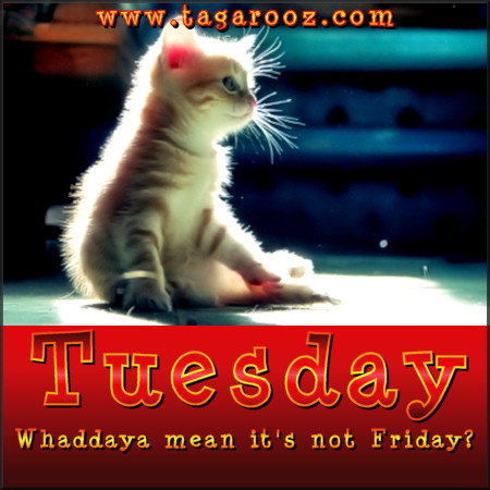 Tuesday Whaddaya Mean it's Not Friday | Tuesday Comments & Graphics