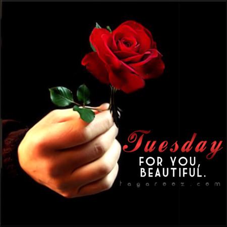 Tuesday for you beautiful | Tuesday Comments & Graphics
