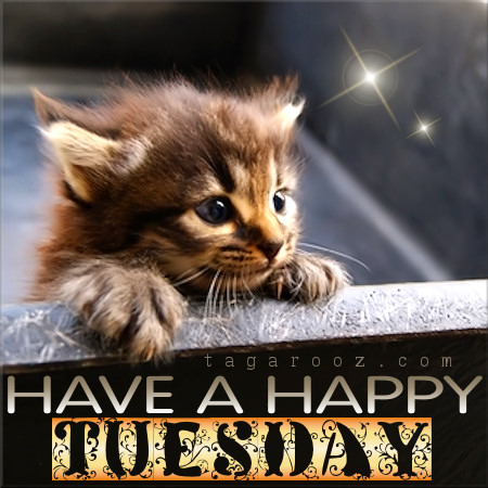 Have a Happy Tuesday | Tuesday Comments & Graphics
