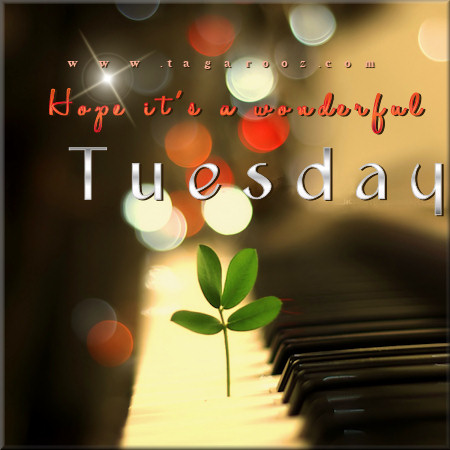 Hope it's a wonderful Tuesday | Tuesday Comments & Graphics
