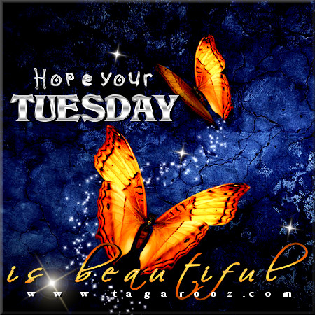 Hope your Tuesday is beautiful | Tuesday Comments & Graphics