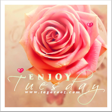 Enjoy Tuesday | Tuesday Comments & Graphics