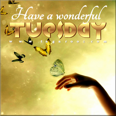 Have a wonderful Tuesday | Tuesday Comments & Graphics
