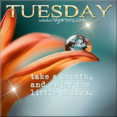 Tuesday take a breath and enjoy the little things   Tuesday Comments & Graphics