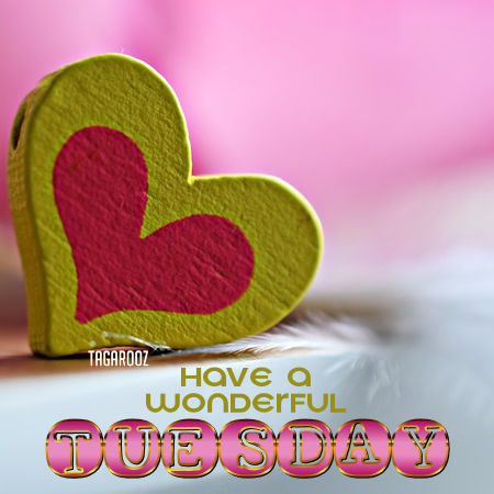 Have a Wonderful Tuesday | Tagarooz.com