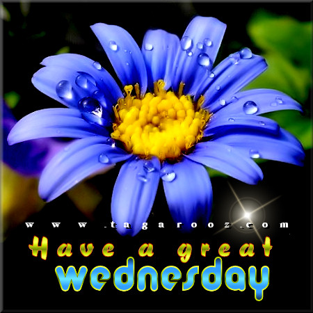 Have a great Wednesday | Wednesday Comments & Graphics