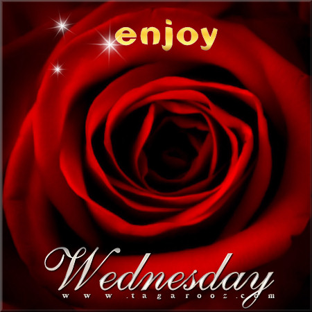 Enjoy Wednesday | Wednesday Comments & Graphics