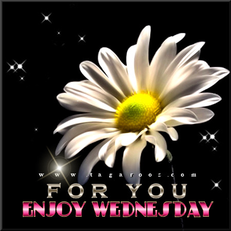 For You. Enjoy Wednesday. | Wednesday Comments & Graphics