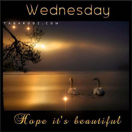 Wednesday hope it's beautiful | Wednesday Comments & Graphics