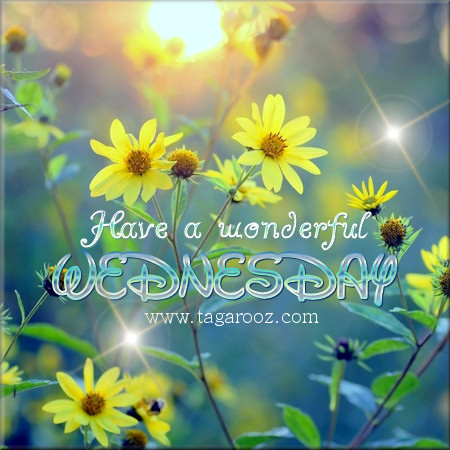 Have a wonderful Wednesday | Wednesday Comments & Graphics